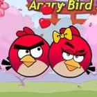 Angry Birds Seek Wife