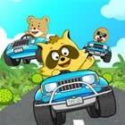 Raccoon Racing