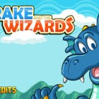 Drake Wizards